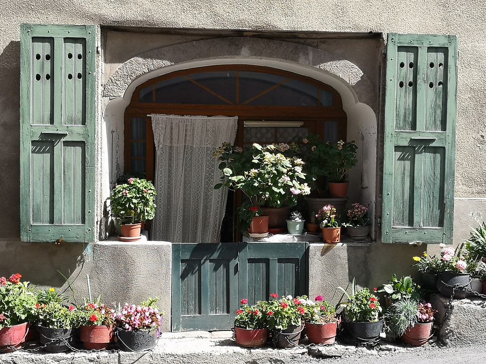 classic shutters and flower pots in Provence