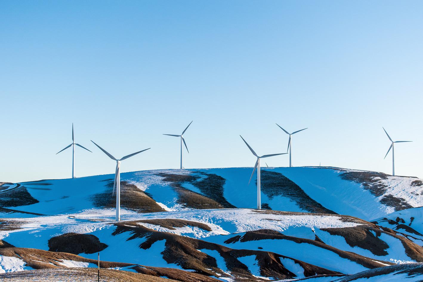 Maintenance of wind turbines