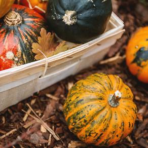 Les fruits et légumes de décembre