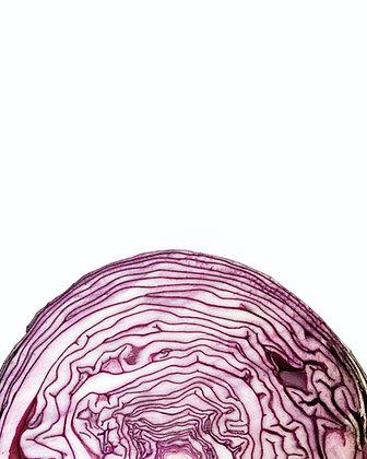 כרוב אדום
