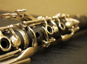 Check-Over Alto Clarinet Repair Service at AH Music