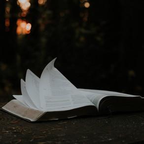 Foolishness, Wisdom, Talk, and Power