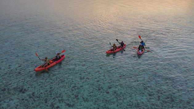 Stradbroke Island Kayak + Dolphin Tour