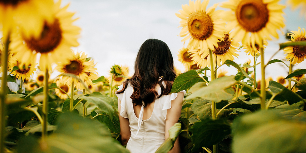 Sunflower Maze Professional Photography Site Fee