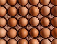 eggs in carton tray