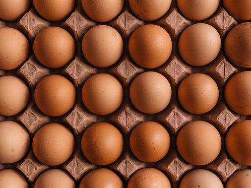 Chicken Eggs - Bakers Dozen (13)