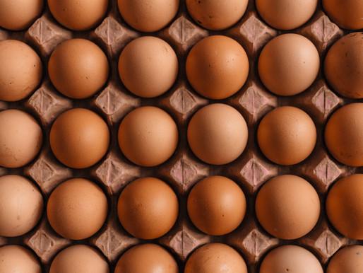 Ovos e Horta