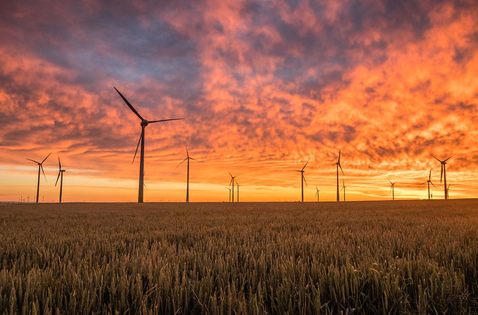 horizon line with wind turbines in a field at sunset