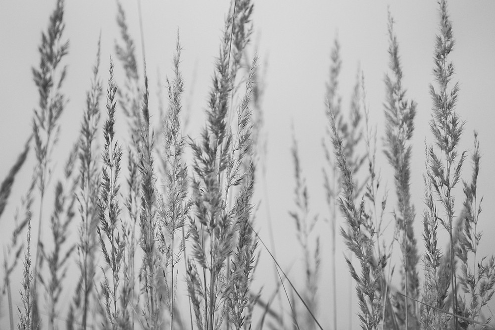 Seasons Change blog post by Stay Lit Apparel, Learning To Trust God in Different Seasons of Life