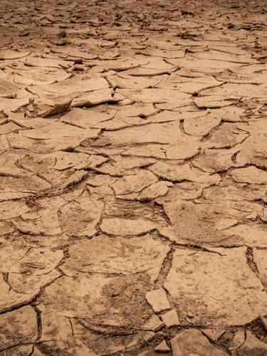 Preparing for Droughts