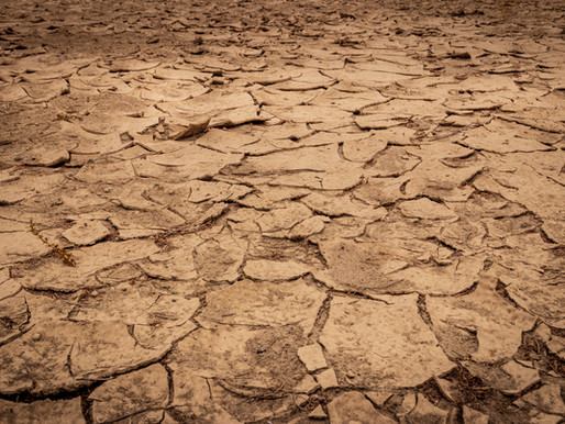 SBA Deadline for Working Capital Loans in York County For Disaster Declaration of Drought