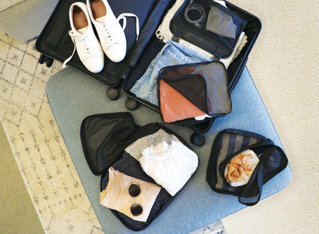 Which Luggage is Right for Your Ocala Vacation?