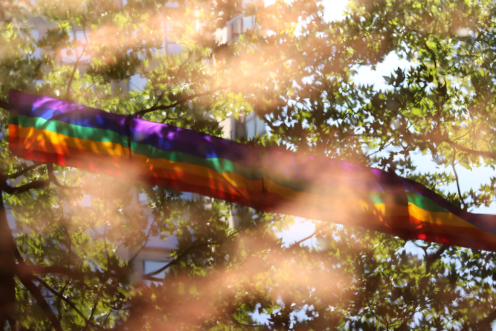 A rainbow banner is flying across the green leaves of the trees above. The sunlight is peering through in a way that obscures some of the image in an amber glow.