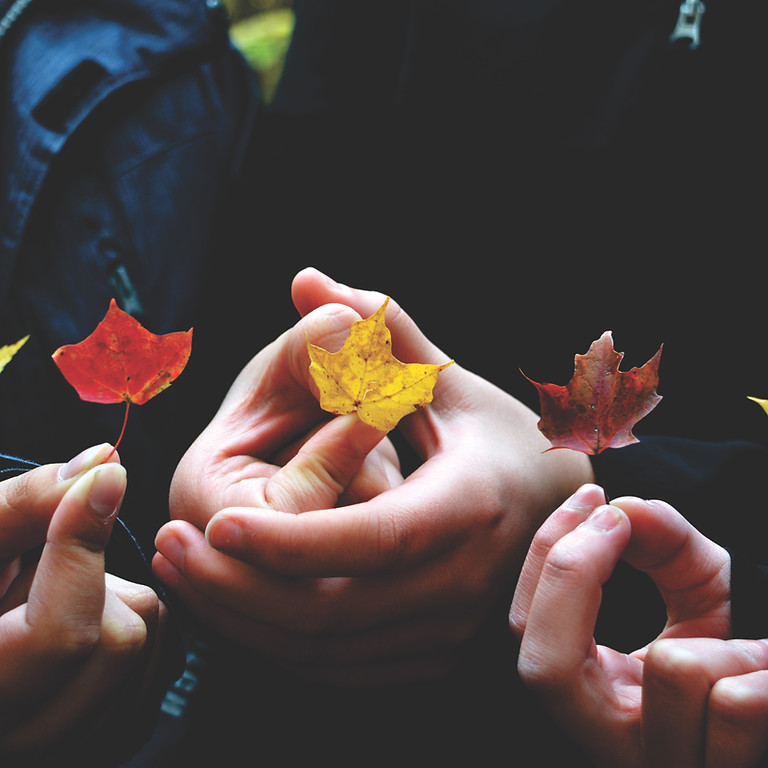 Hand in Hand: Understanding Anxiety Disorders in Children and Adolescents