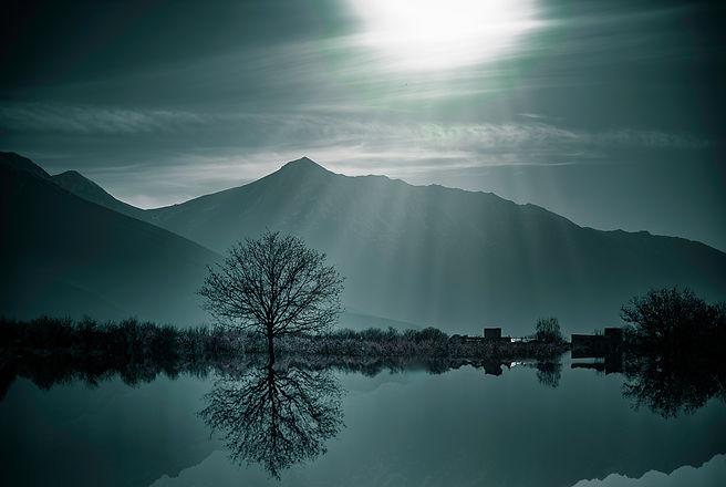 Image by Kourosh Qaffari