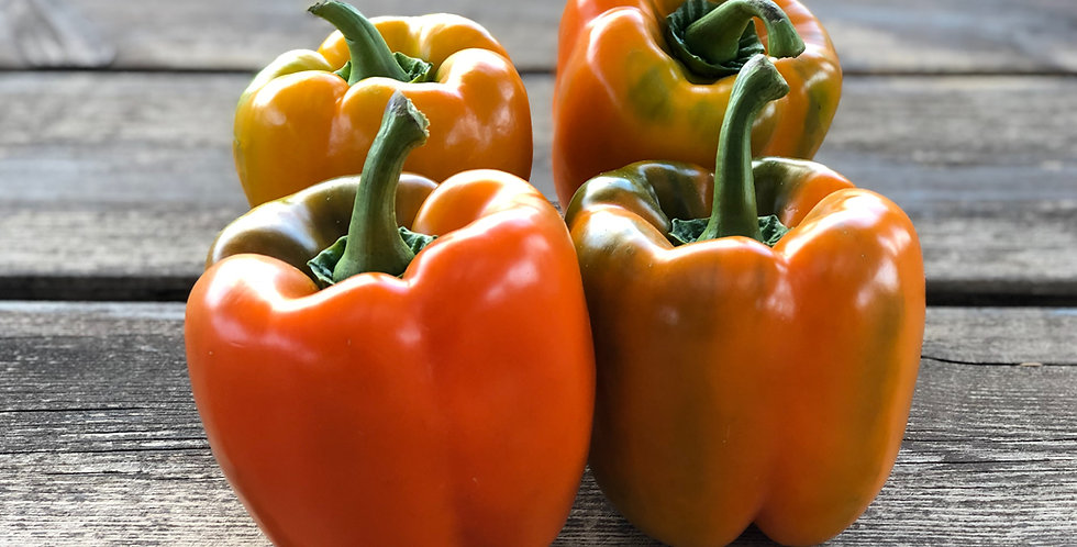 Sweet Pepper- Orange
