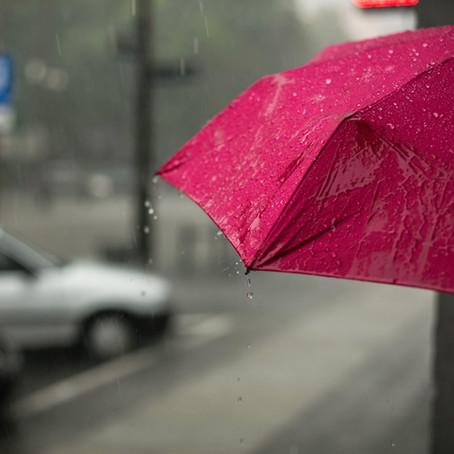 Escritores da estação chuvosa