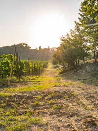 Qué ver en el Valle de Chianti