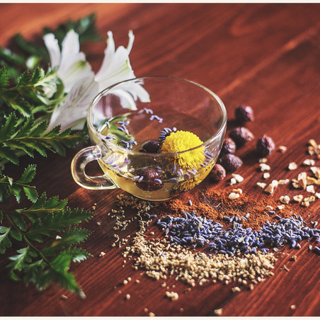 Healthy Life: 5 Herbs for Household Use