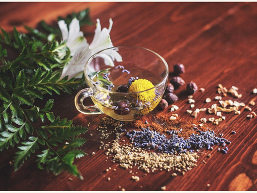 Herbs to support your menstrual cycle