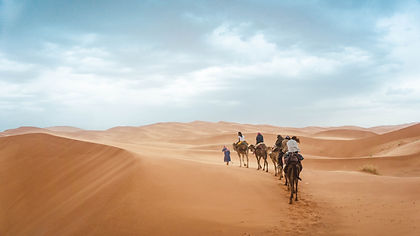 Here's a trip to Morocco that promises to be epic.  Delve into the markets and medinas of the cities, take a camel into the Sahara, go for a hike in the Todra Gorge and get blown away by the amazing food Morocco has to offer.
