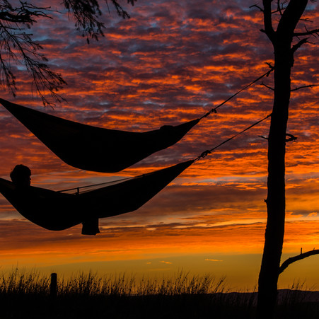 Jo's Journal: We All Need Time to Relax and Recharge