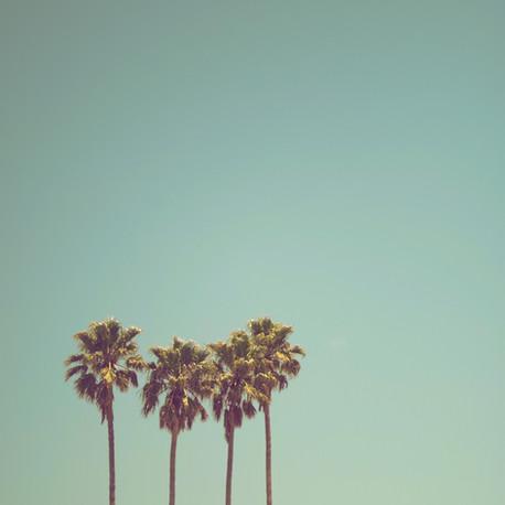 Endlich Sommerferien...