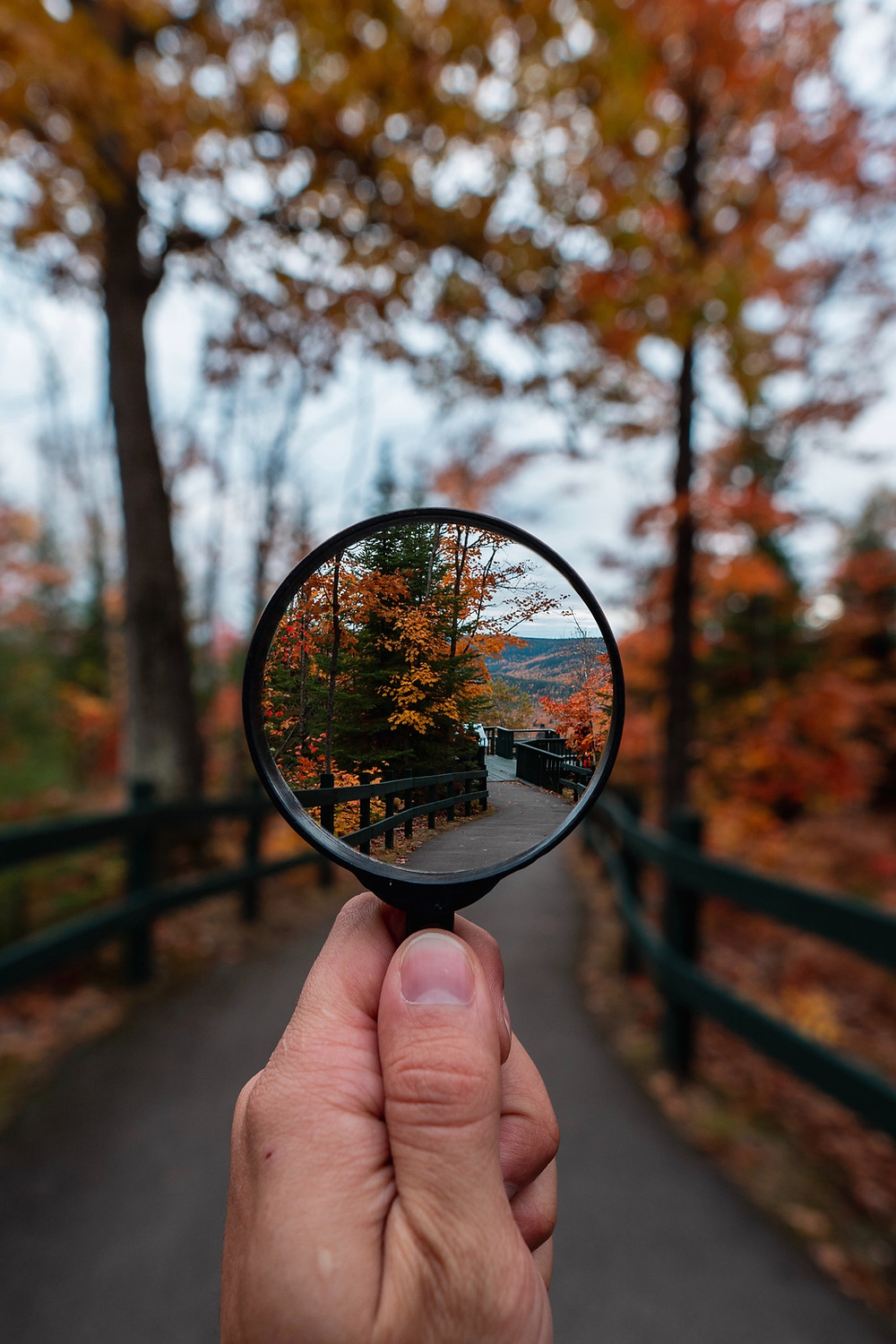 Starting a New Business? Be aware of the magnifying glass effect