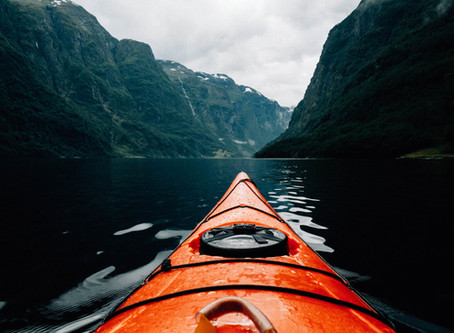 The unique waters of New Zealand's fjords