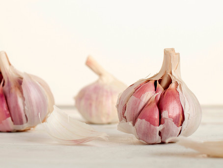 roasted garlic sauce