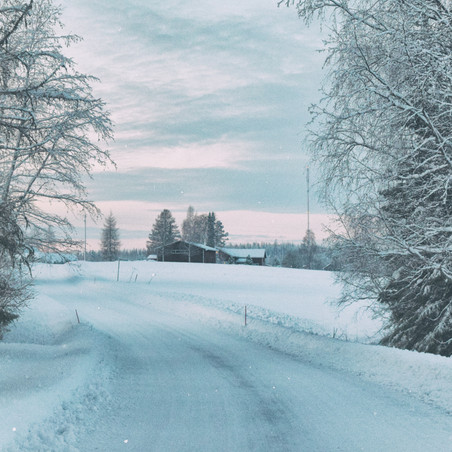Jo's Journal: Waiting for the Mail Carrier During a Snowstorm