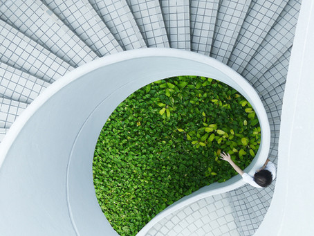 How to use biophilic design to energize your office
