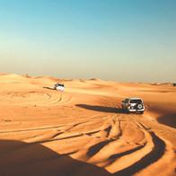 Desert 4WD