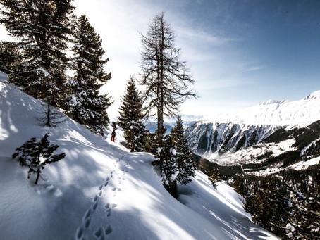 Wandelprogramma 2020: Sneeuwschoenwandeling