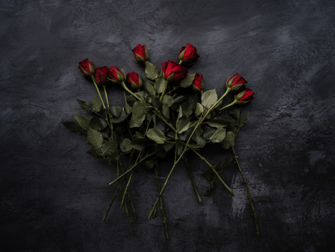 Episodes Part IV: Roses and Regrets