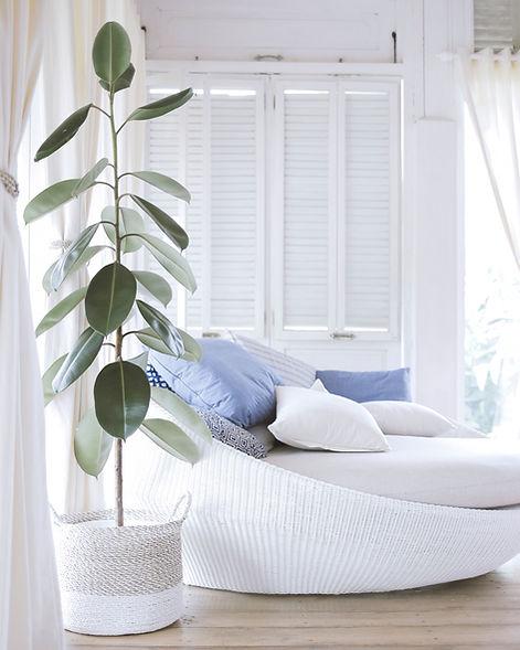 Salon bleu et blanc