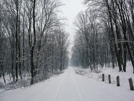 Week 3 Day 17: White as Snow