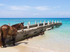 Sandles Montego Bay, Jamaica