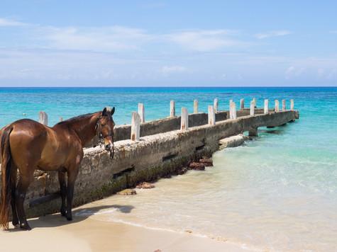Sandals Montego Bay, Jamaica