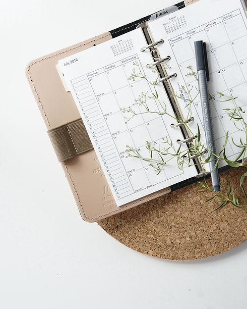 An therapists' appointment book with a pen