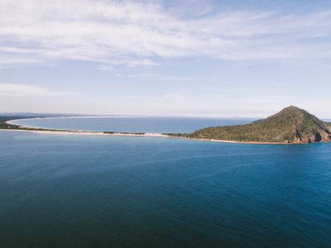 Dolphin Adventures on a Port Stephens Holiday