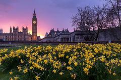 DEBRA UK