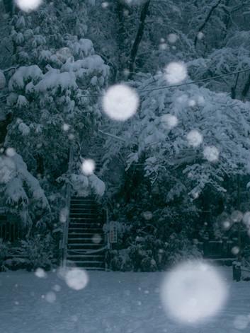 Billede af Takemaru Hirai