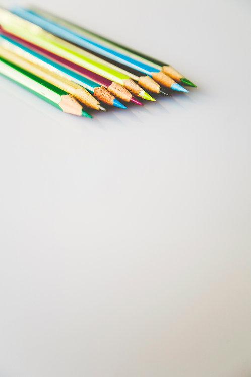 Schulen / Institutionen / Firmen