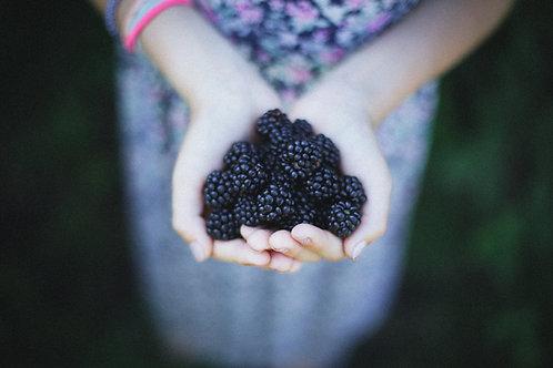 Blackberries - punnet