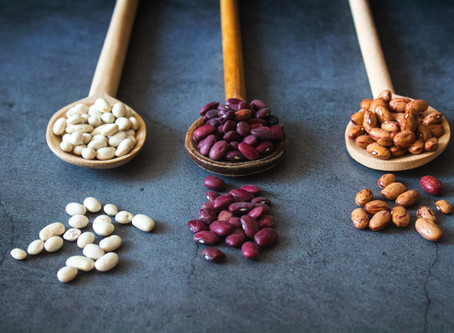What is the BEAN PROTOCOL? And why is everyone eating beans?