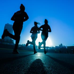 Sports Intelligence Pathway