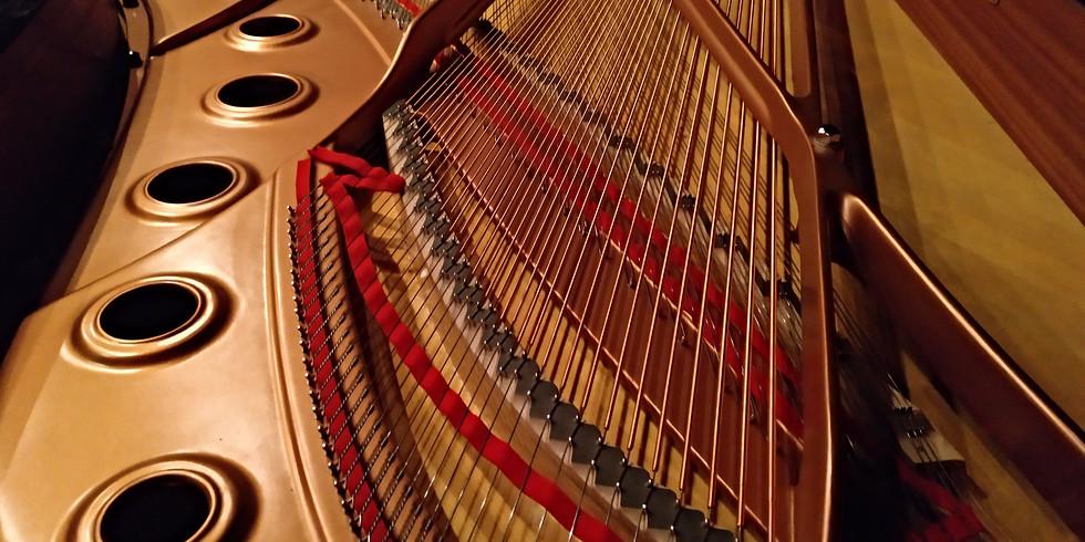 THE SECRETS OF A PIANO
