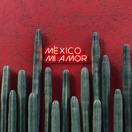 Mi México mío