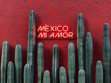 15 Curiosidades de México
